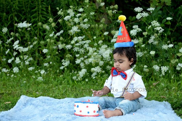 WEB ONLINE USE Vihaan Cake Smash Aug 15 2014 (21)