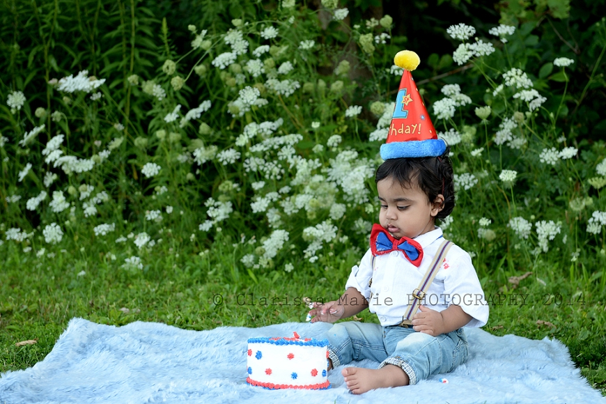 WEB ONLINE USE Vihaan Cake Smash Aug 15 2014 (21)