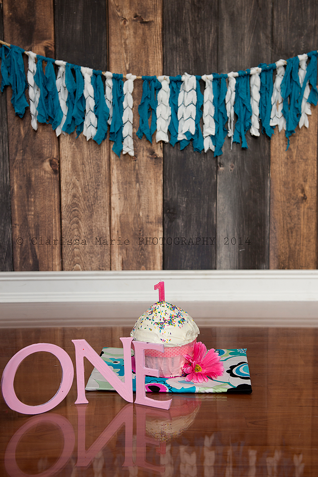 WEB ONLINE USE Lux Cake Smash Sept 14 2014 (15)